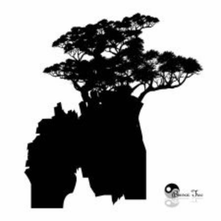 Japanese bonsai tree and stone , Black silhouette of bonsai. Detailed image. Vector Illusztráció