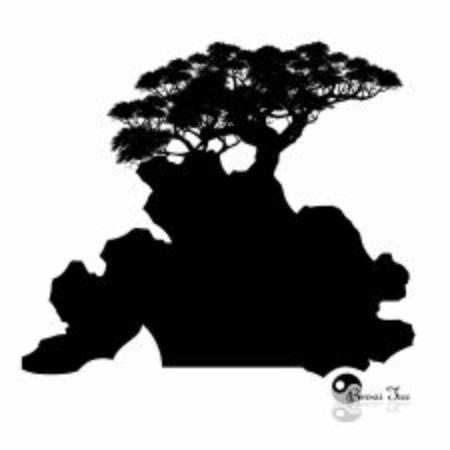 Japanese bonsai tree and stone , Black silhouette of bonsai. Detailed image. Vector Stock Illustratie