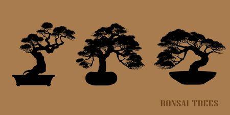 set of Bonsai, Black silhouette of bonsai. Vector illustration. Original bonsai style vector illustrations. Decorative arts Small plant in pot Decorative plants, dwarf trees, ornamental plants. 일러스트