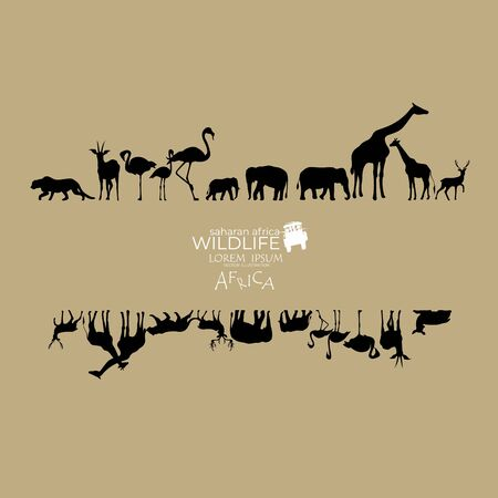 africa wildlife , vector illustration,animals background