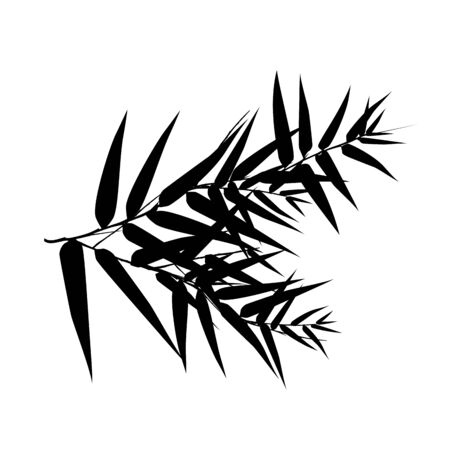 Seamless pattern in black and white of the bamboo tree, Vector illustration of bamboo, design of Chinese and Japanese trees,  Monochrome trees wallpaper for cards and web. Иллюстрация