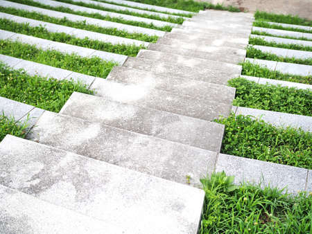 Scenery of the stairs where the grass grew