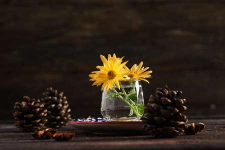 Terrific Yellow Chrysanthemum on Dark Wooden Background