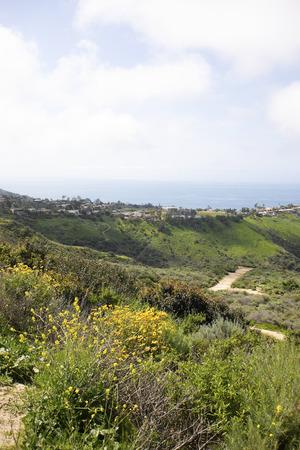 Aliso & Woods Canyon Wilderness trail au printemps après une saison des pluies, Laguna Beach, CA sentiers de randonnée.