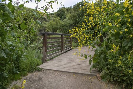 Bridge on hiking trail in the hills of Crystal Cove State Park in the spring. Escaping a hectic lifestyle by hiking and enjoying nature. Healthy living.  Back country hiking trails