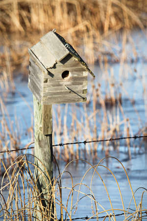 Bird house during spring while water is still frozen.
