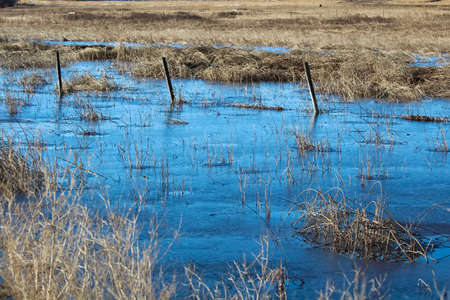 A barbed wire fence silhouette running through a frozen swamp. Stock Photo