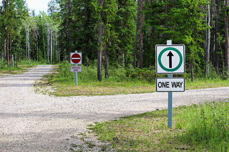 A one way and a wrong way sign by a country road intersection.