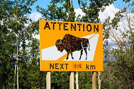 An attention bison of roadway for the next 315km warning sign.