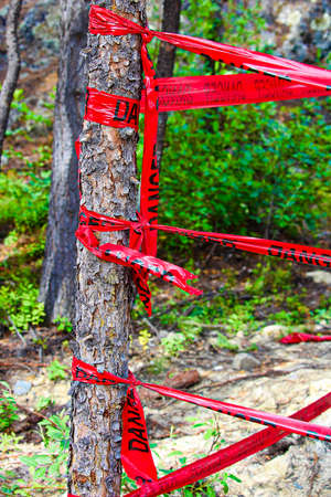 Red danger tape wrapped around a tree.