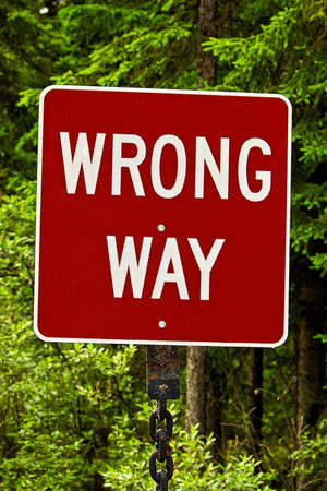 enforce: A red wrong way sign against trees.