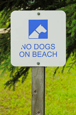 A white no dogs allowed on beach sign. Archivio Fotografico
