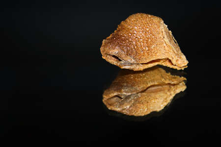 The top view of a praying mantis ootheca with a mirrored reflection isolated on a black background. Stock Photo