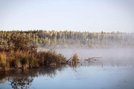 Morning mist rising off of Alberta Lake.
