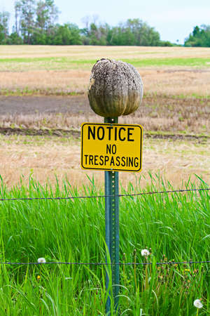 Notice no trespassing sign with a rotten pumpkin on the post. Stock Photo