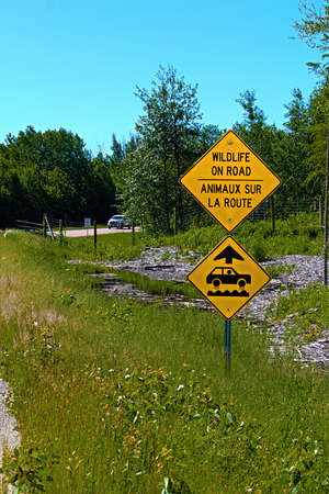 Wildlife on road warning sign with bumps ahead.