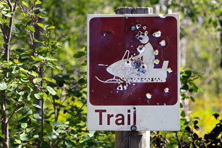 Closeup of a shot up trail sign in summer.