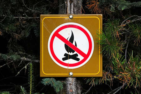 A no campfire sign posted on a tree