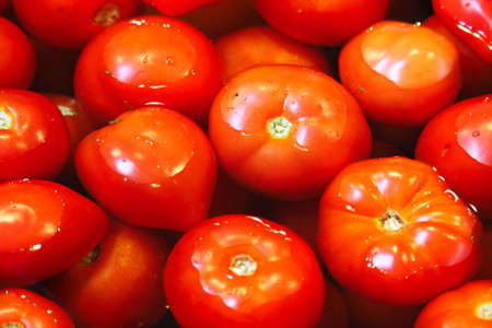 Close-up of various tomatoes being washed in water
