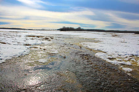 Water flowing along farmland during the spring melt
