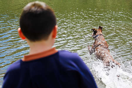 A boy watching his dog playing in the water