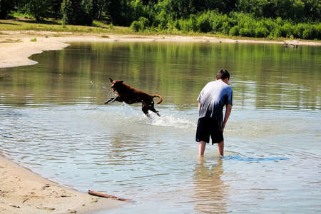 A young boy playing with his dog in the water