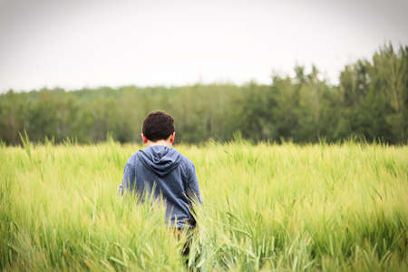 A young boy walks in a green barley field