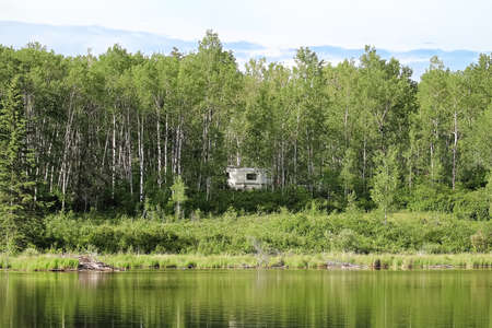 A camper hidden in the trees beside water