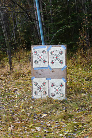 Shooting targets setup on plywood in front of trees 写真素材