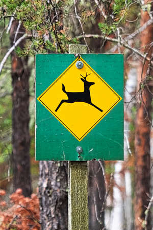 A green and orange deer crossing warning sign