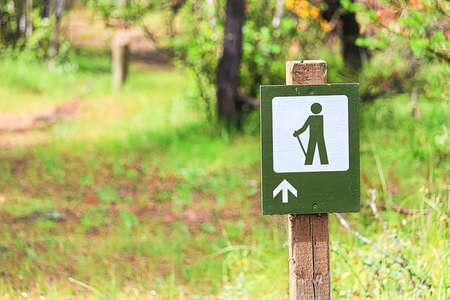 A hiking path sign with a forest in the background.