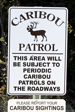 A caribou patrol sign indicating to report sightings.