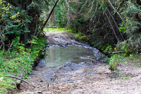 A portion of an atv trail going through water and mud Stock Photo