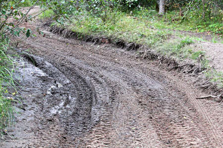 Closeup of atv tracks on a wet muddy trail