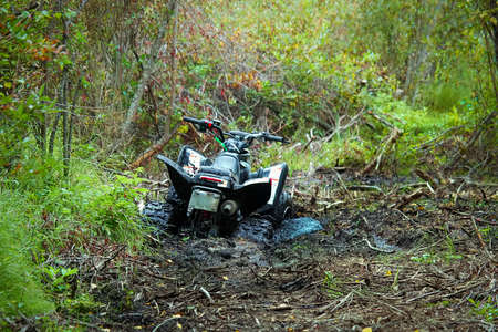 View of a quad stuck in the mud. Banco de Imagens - 119273449