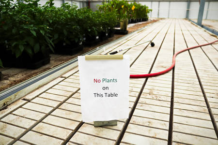 A no plants on this table sign in a greenhouse Banco de Imagens