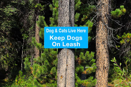 A dogs and cats live here keep dogs on leash sign