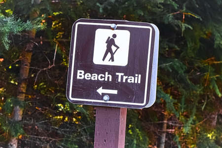 A beach trail sign with an arrow pointing in the direction