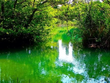 national park: National park Krka. Croatia