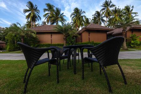 tourist feature: Chair in Garden Editorial