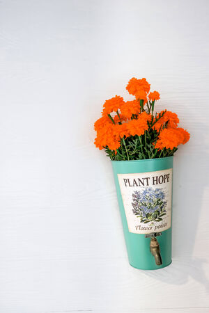 implanted: flower pot with orange flowers hanging on a house wall