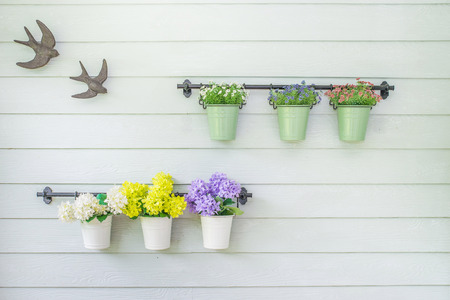 Flowers in flowerpot on wooden wall photo