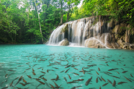 Level two of Erawan Waterfall in Kanchanaburi Province, Thailand photo
