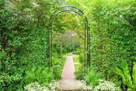 wicket gate: Decorative arched iron gateway to a garden