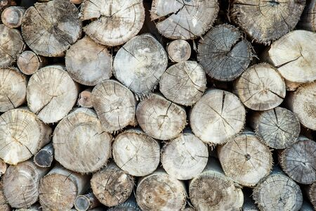 stow: Stow of firewood just before winter Stock Photo