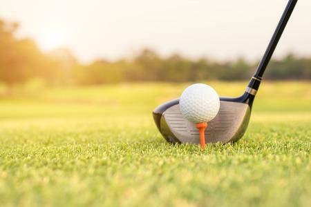 caddie: Golf club and ball in grass
