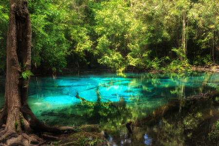 Blue pool at Emerald Pool is unseen pool in mangrove forest at Krabi in Thailand.