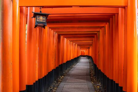 Thousand of red  torii gates along walkway in fushimi inari taisha temple is Important Shinto shrine and located in kyoto japan. Japan tourism, nature life, or landscape most visited tourist attractions concept.