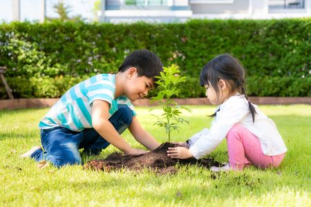 Asian sibling brother and sister planting young tree on black soil together as save world in garden at house on summer day. Planting tree. Childchood and outdoor leisure concept. 版權商用圖片
