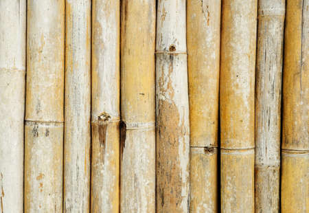 bamboo fence for background Stock Photo